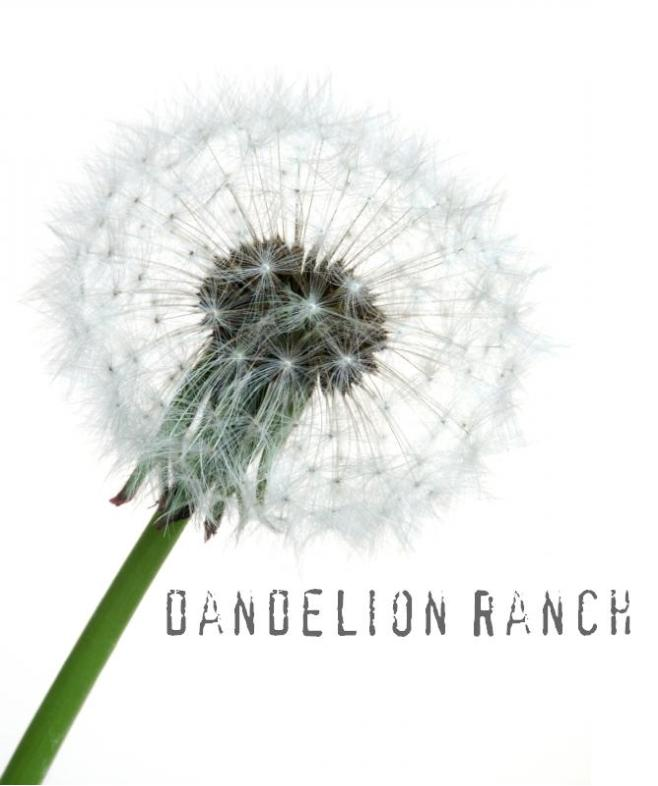 dandelion ranch